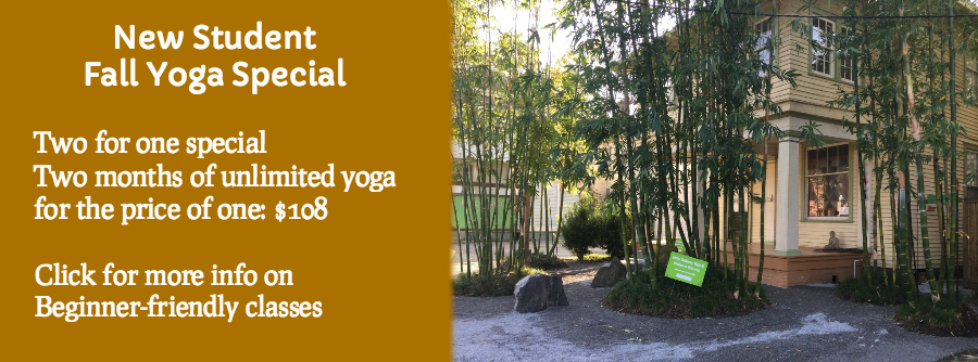 New Student Fall Yoga Special