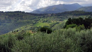 Yoga Retreat in Lucca Hills, Tuscany Italy